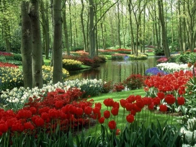 Самые экзотические парки и места для прогулок