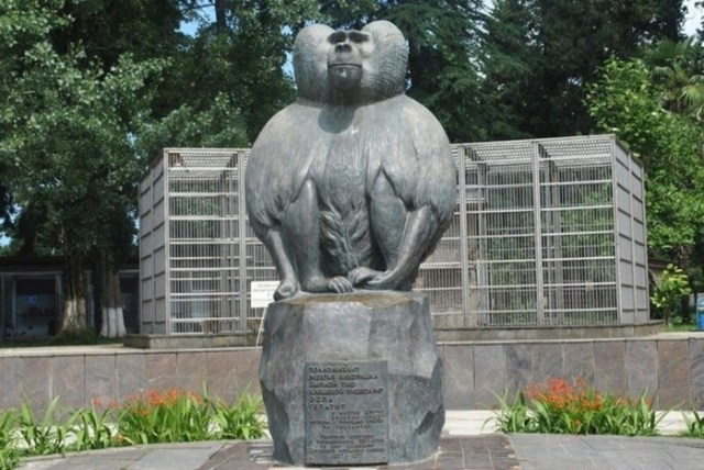 На службе науки: памятники животным, участвовавших в опытах