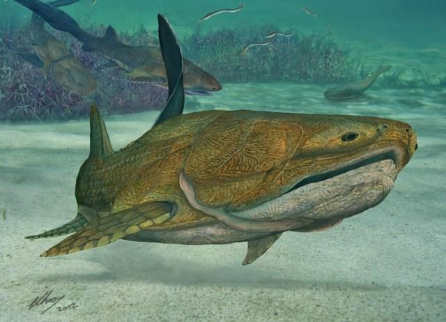 Ученые установили, что первое лицо на Земле было у древней рыбы