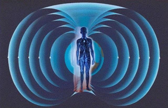 Как влияет магнитное поле Земли на человека
