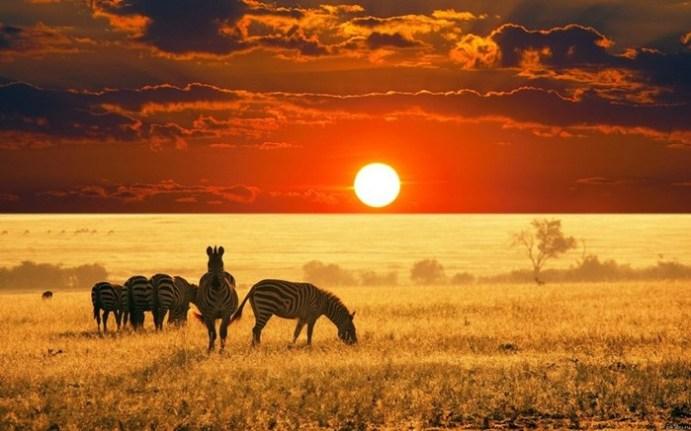 Африка: «Черный континент» планеты