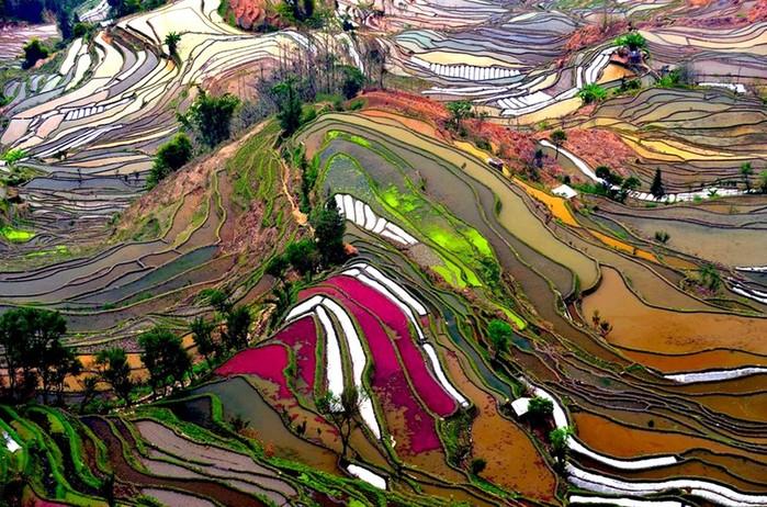 Китайские пейзажи, вода и деревья— великолепная приманка для туристов!