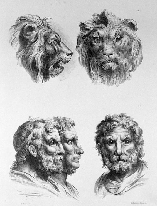 Каквыглядят люди, которые произошли от разных животных