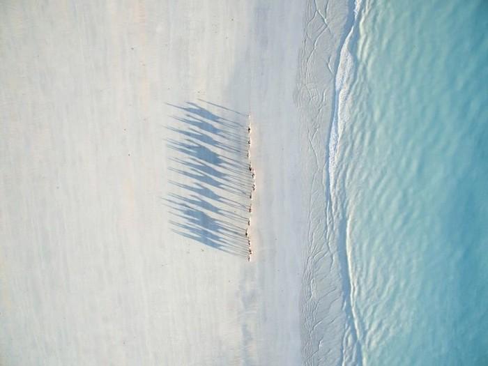 Конкурс фотографий, снятых с дронов