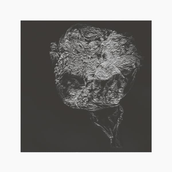 DAVID TOOP / Entities Inertias Faint Beings (LP+DL)