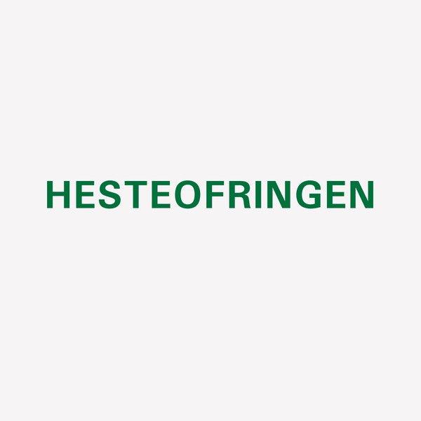 HENNING CHRISTIANSEN / Hesteofringen (10 inch)
