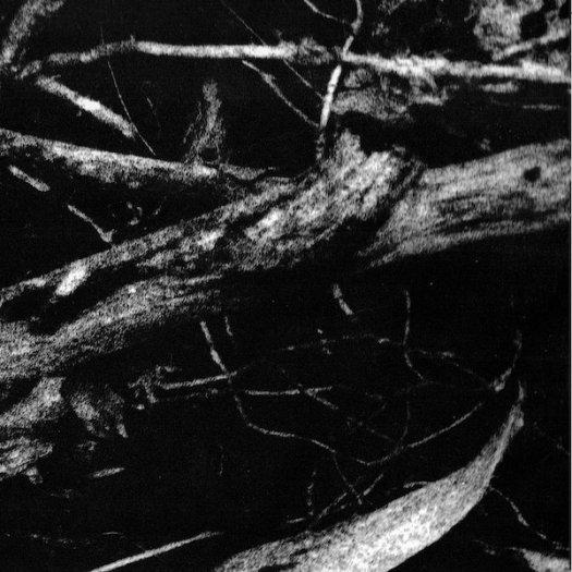 SMALL CRUEL PARTY / Islands Of Sleep (CD)