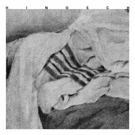 HINOSCH / Hands (LP)