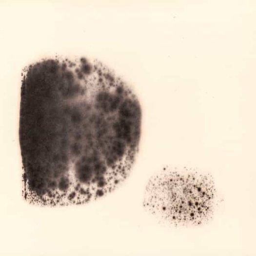 PAN SONIC & CHARLEMAGNE PALESTINE / Mort Aux Vaches (2LP)