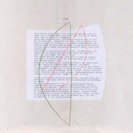 FELICIA ATKINSON / Echo (LP)