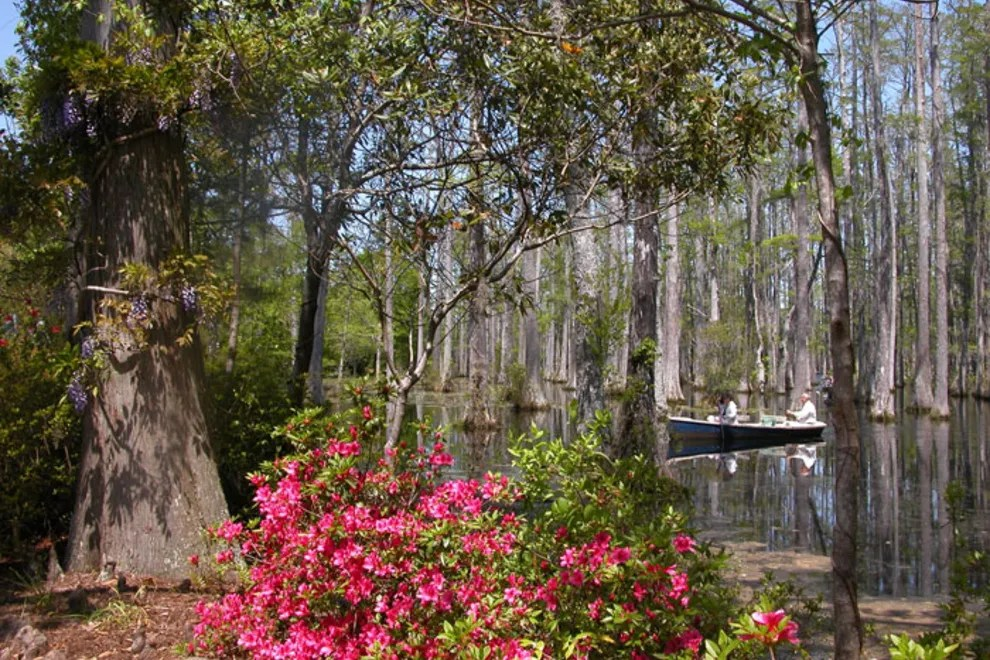 Cypress Gardens Charleston Sc