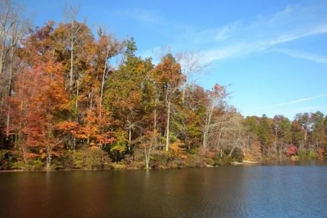 Photos of paris mountain state park loop trail. Paris Mountain State Park Is One Of The Very Best Things To Do In Greenville