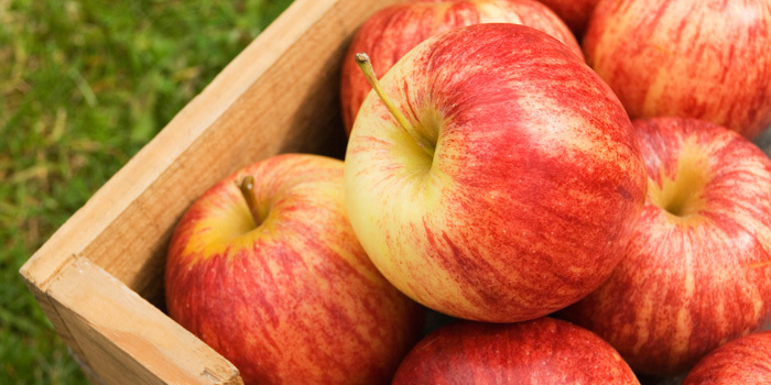Beachbody-Blog-10-apple-popular-varieties