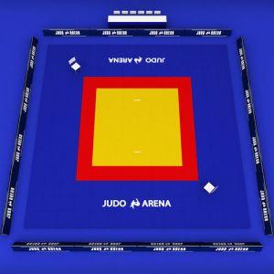 3D model japan Judo tatami sport arena low poly | CGTrader