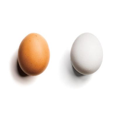 1 you pick brown eggs over less nutritious white nutrition tips and nutrition questions