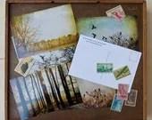 Set of 12 Postcards, Birds and Landscapes, Fine Art Photography by Tricia McKellar - TriciaMcKellarPhoto