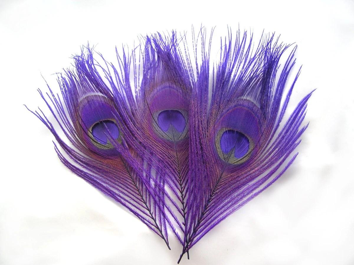 ROYAL PURPLE Peacock Feather Eyes 6 Piece2 Size OptionR