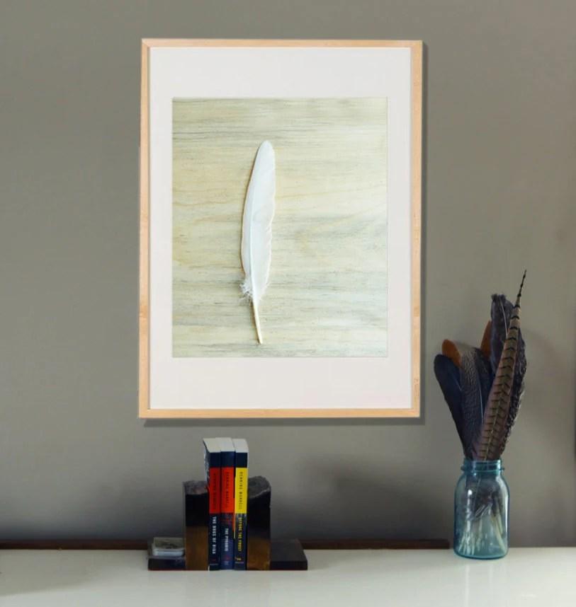 Minimal Home Decor White Feather on Blue Pine 16x20  Archival Photograph - lucysnowephotography