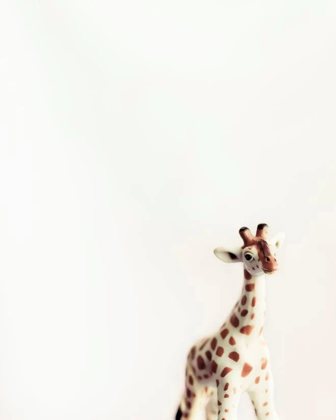 Children decor idea, brown and white- tiny giraffe photograph- safari- beige- minimalist wall decor for kids - Raceytay