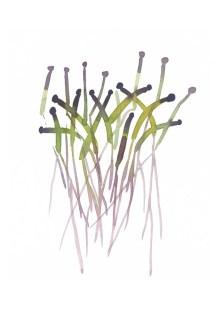 Treasury Spring kitchen decor Sprouts print from original watercolor painting purple lavender green home decor - LouiseArtStudio