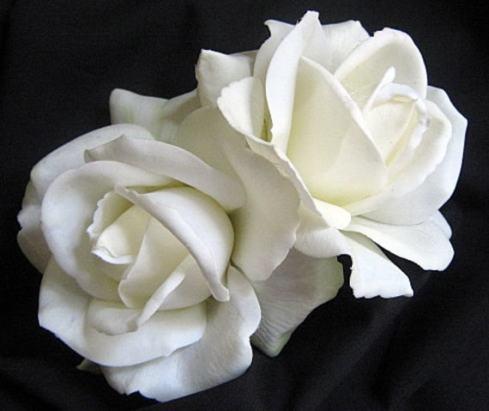 natural white rose bridal silk flower hair clips set of 2
