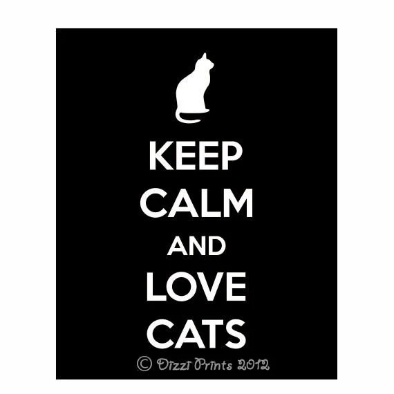 Keep Calm And Love Cats Poster Keep Calm And Carry On