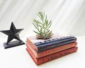 Upcycled Vintage Book Planter Repurposed Red White Plaid White Stripes Recycled Succulent Air Plant Pot Natural Moss // Spies - UpboundBooks