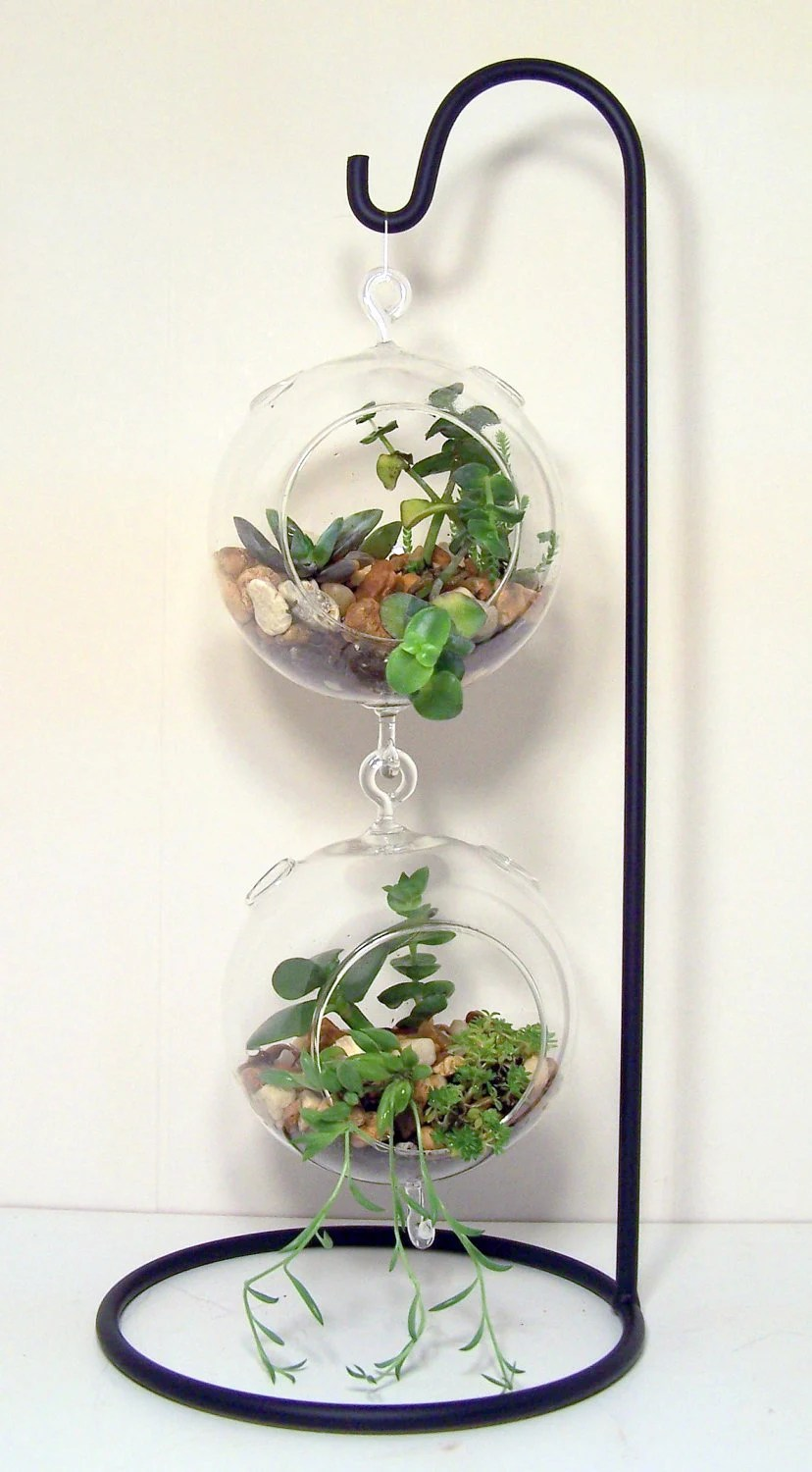 Large Hanging Glass Terrarium Stand or Ornament Holder made of on Hanging Stand For Plants  id=49478