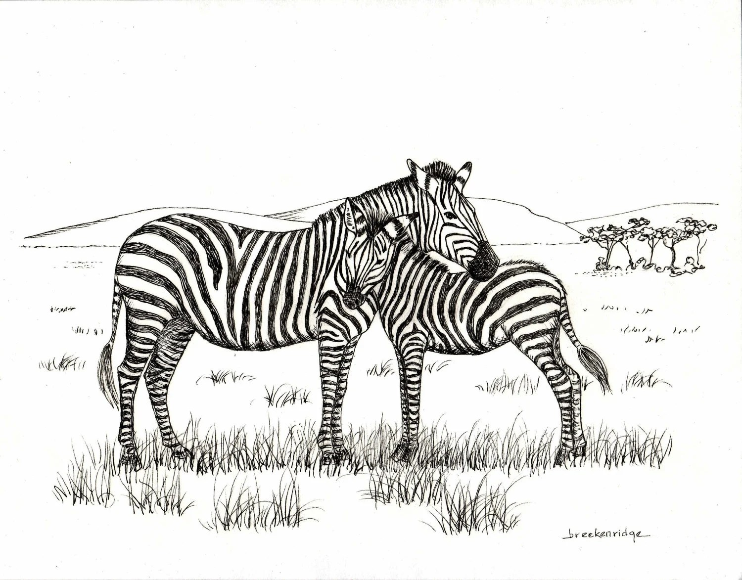 Mother And Baby Zebra Drawing Print