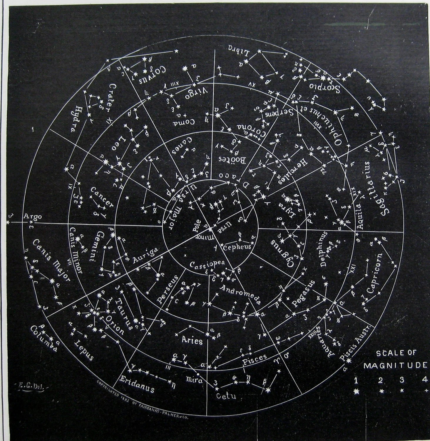 Antique Stars And Constellations Chart By Plaindealing