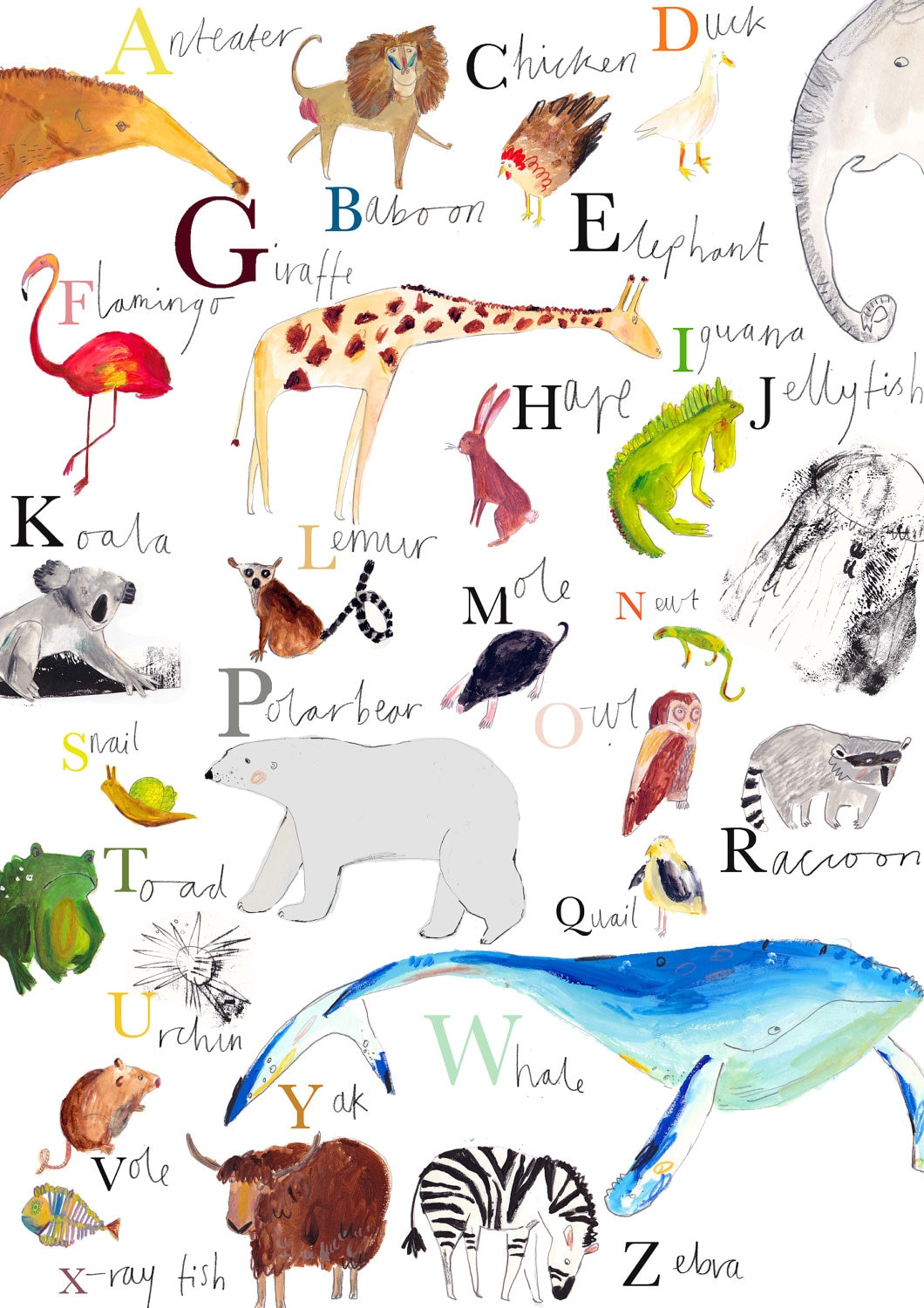 A Z Animal Wall Chart Limited Edition Print By By