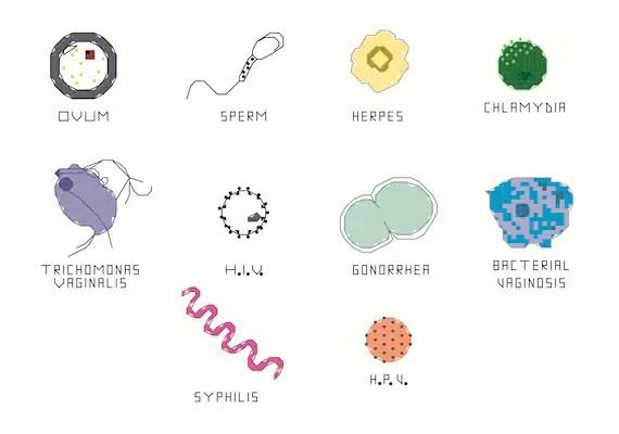 Cross Stitch Pattern Set -- STD Microbes, 10 small science patterns