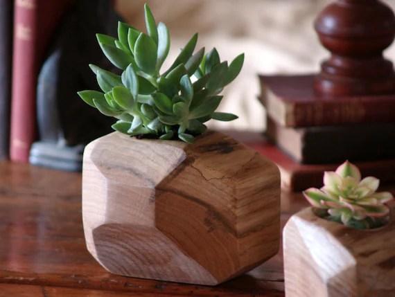 Wood Succulent Planter Modern Succulent Holder Reclaimed