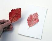 Red Leaf Original Watercolor Painting, Red Leaf Painting, Leaf Watercolor, Red Orange Leaf, Autumn Leaf Painting, Nature Study - trowelandpaintbrush