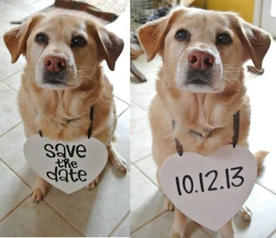 Unique Save Date Announcements