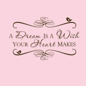 Afbeeldingsresultaat voor a dream is a wish your heart makes