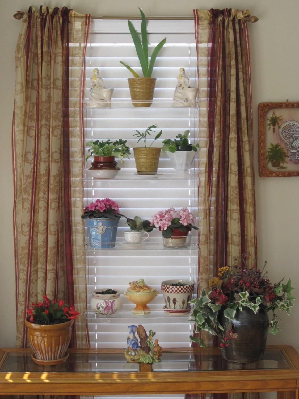 Indoor Plant Shelf