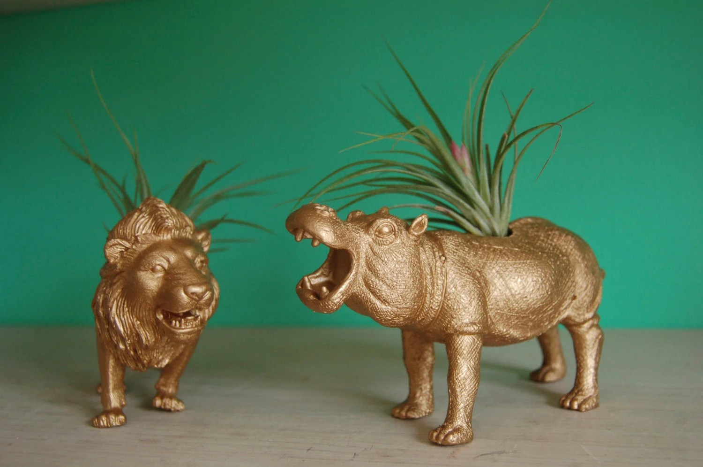 Gold Tillandsia Planters // Air Plant Animal Pots // Lion & Hippo - Alycepaul