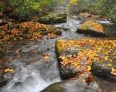 River Mist Rapids, Autumn...