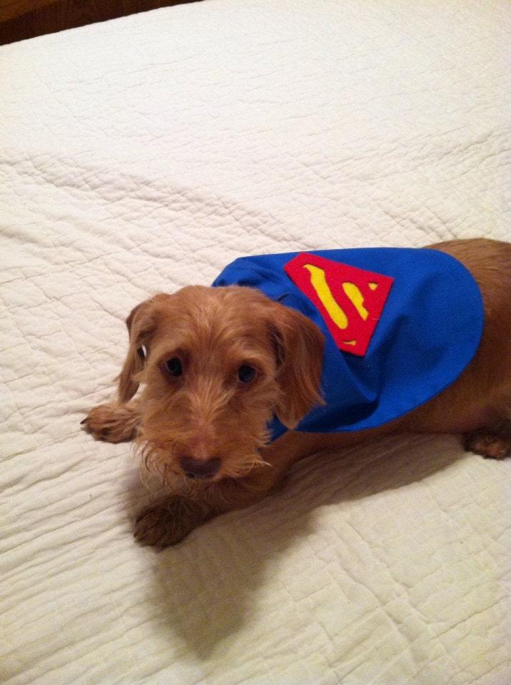 Small Dog Superman Superhero Cape Slides Right Over The