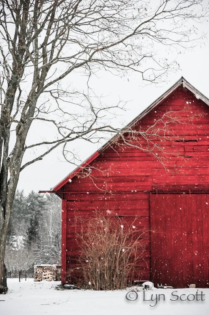 Barn Stars Home Decor