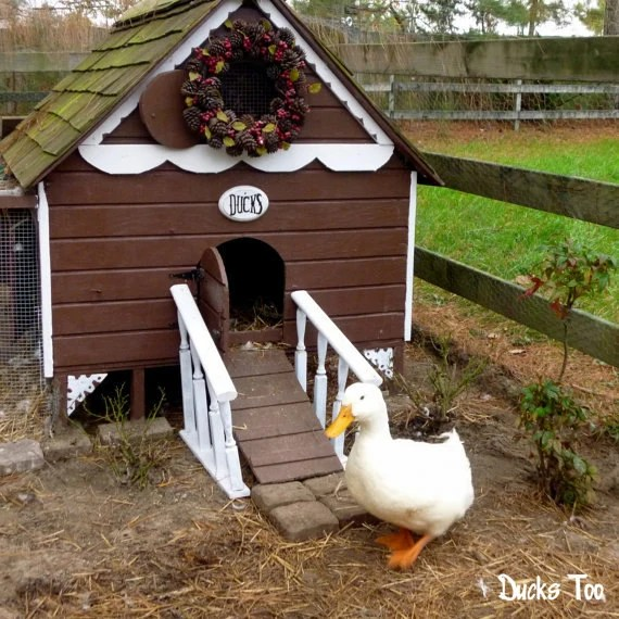 Gingerbread Duck House Plans Pdf Room In Coop For Up To 6