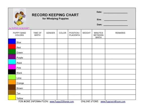 Copy Blank Work Schedule