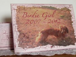 Custom Pet Keepsake Box - Medium - Personalized Pet Memorial Handmade With Your Photo