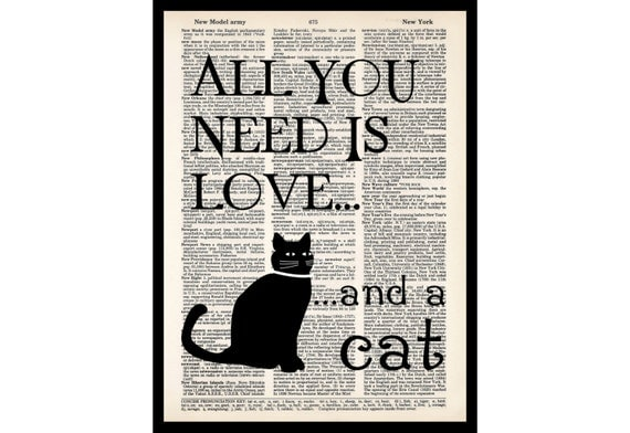 Download All You Need Is Love And A Cat Gift for Cat Lover