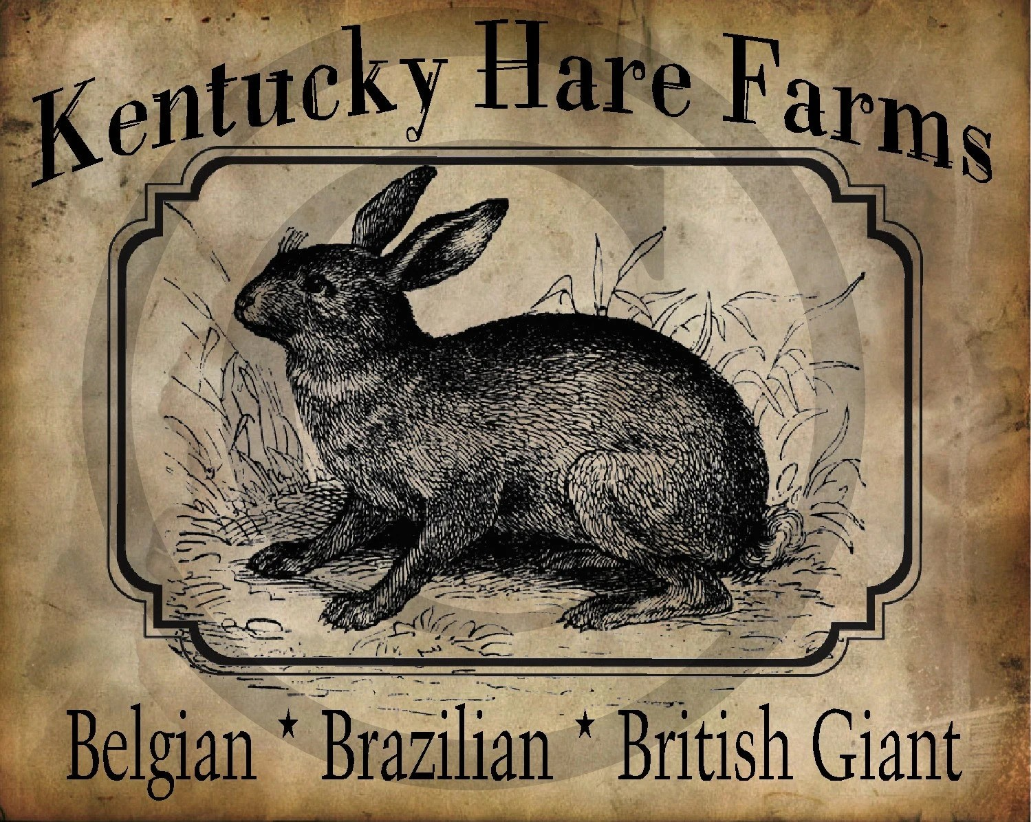 Primitive Kentucky Hare Farms Bunny Rabbit Print Digital