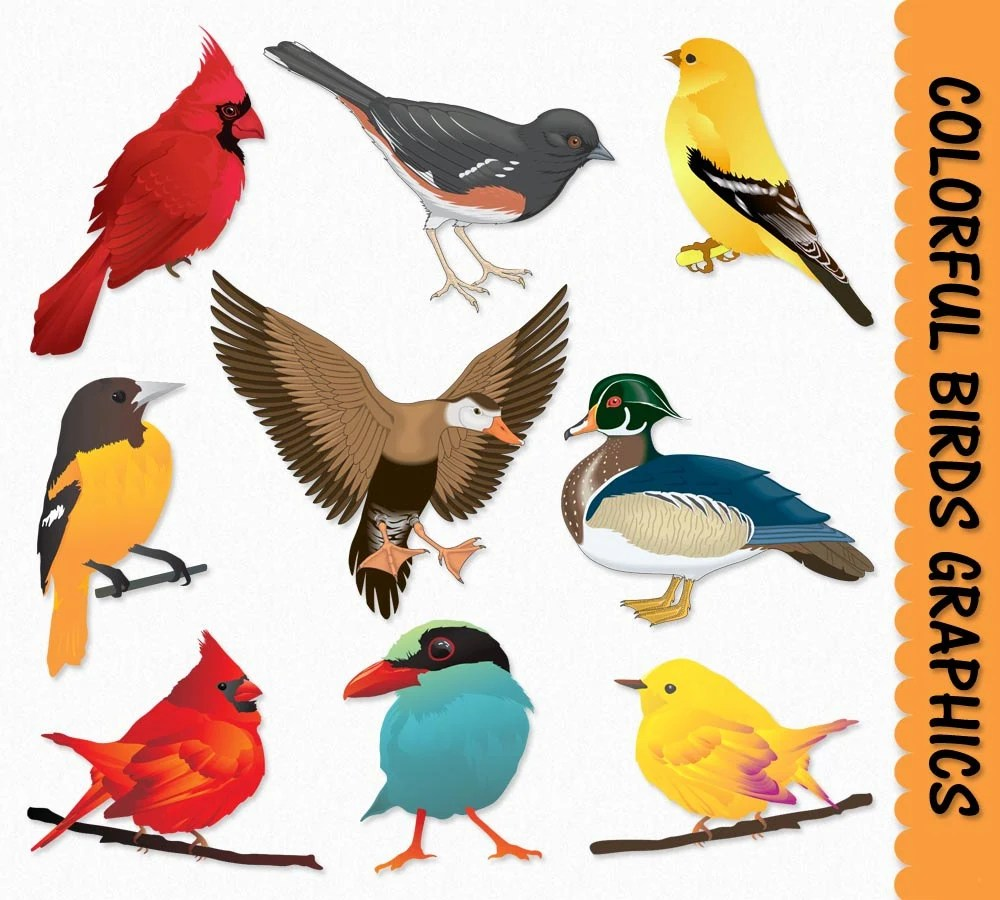 Birds Clip Art Graphics Bird Clipart Cardinal Duck Sparrow