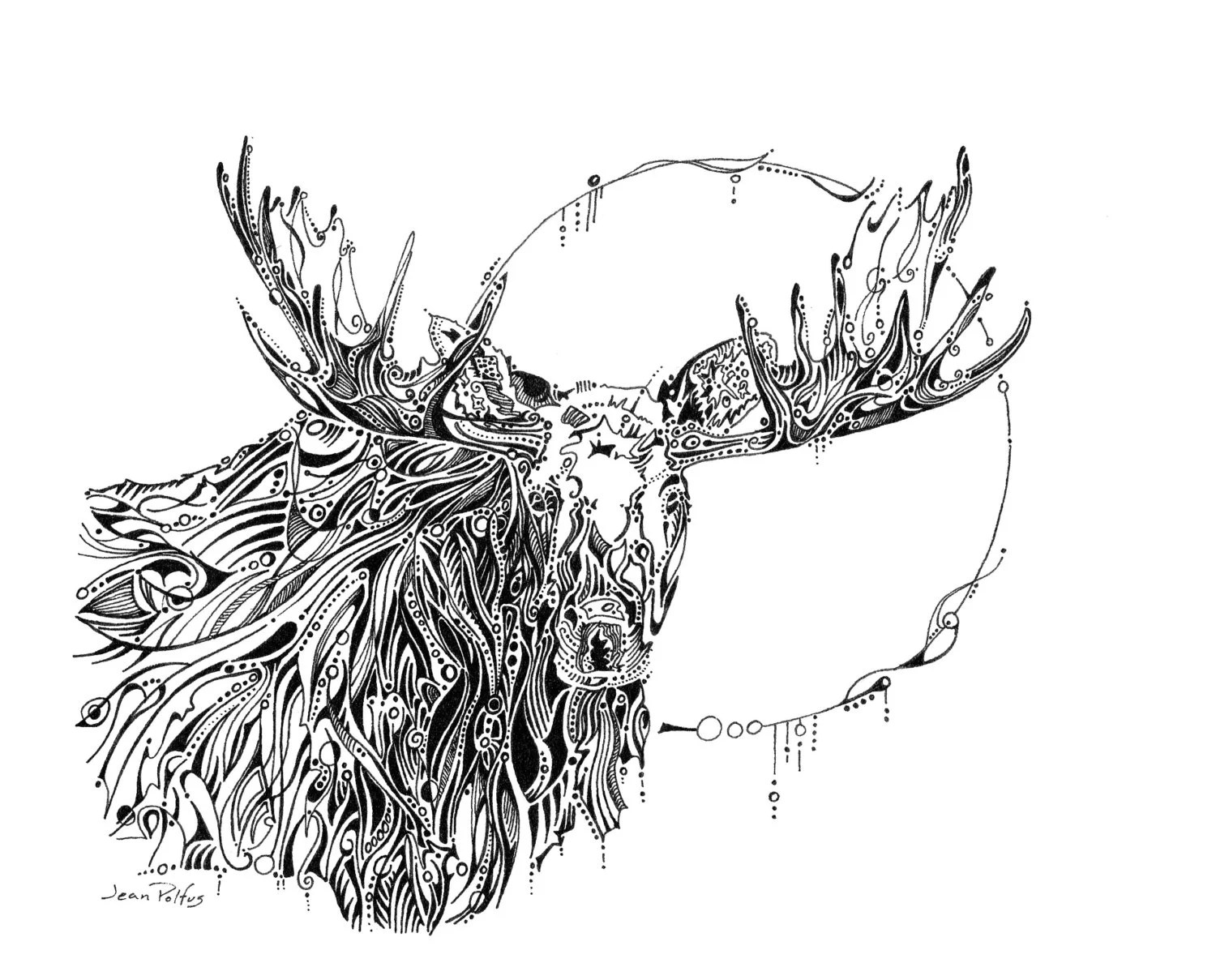 Moon Moose Drawing Bull Moose Moose Illustration Woodland