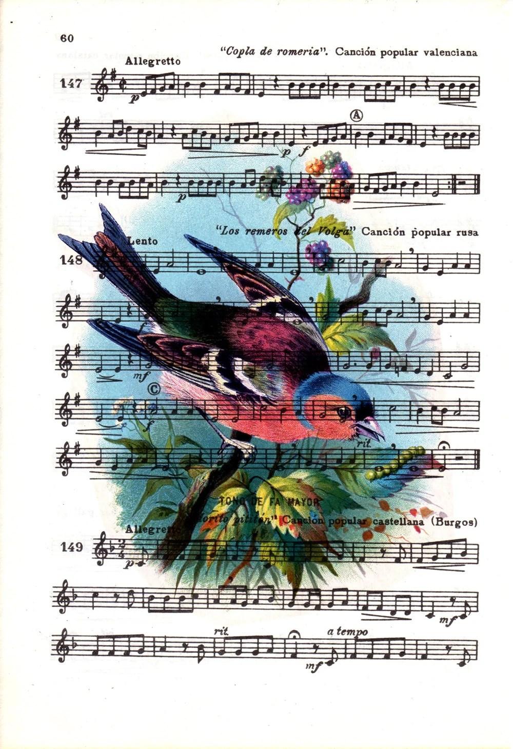 Birds Sheet Music Etsy