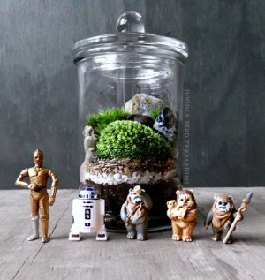Star Wars R2-D2 C-3Po Ewok Terrarium Gift Set Collectible Memorabilia